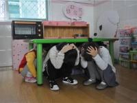中班安全教案:地震来了我不怕(地震常识)