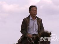 王德亮:养珍珠鸡灭蝗虫三个月赚三百万
